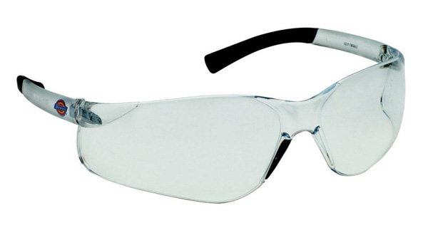 Goggles Spectacles DICKIES - SP1010